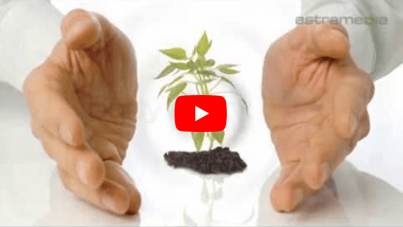 Body Detox YouTube Video